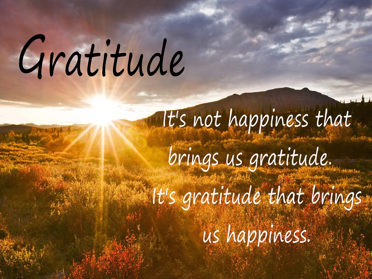 thankful quotes gratitude it is not happiness meridian success